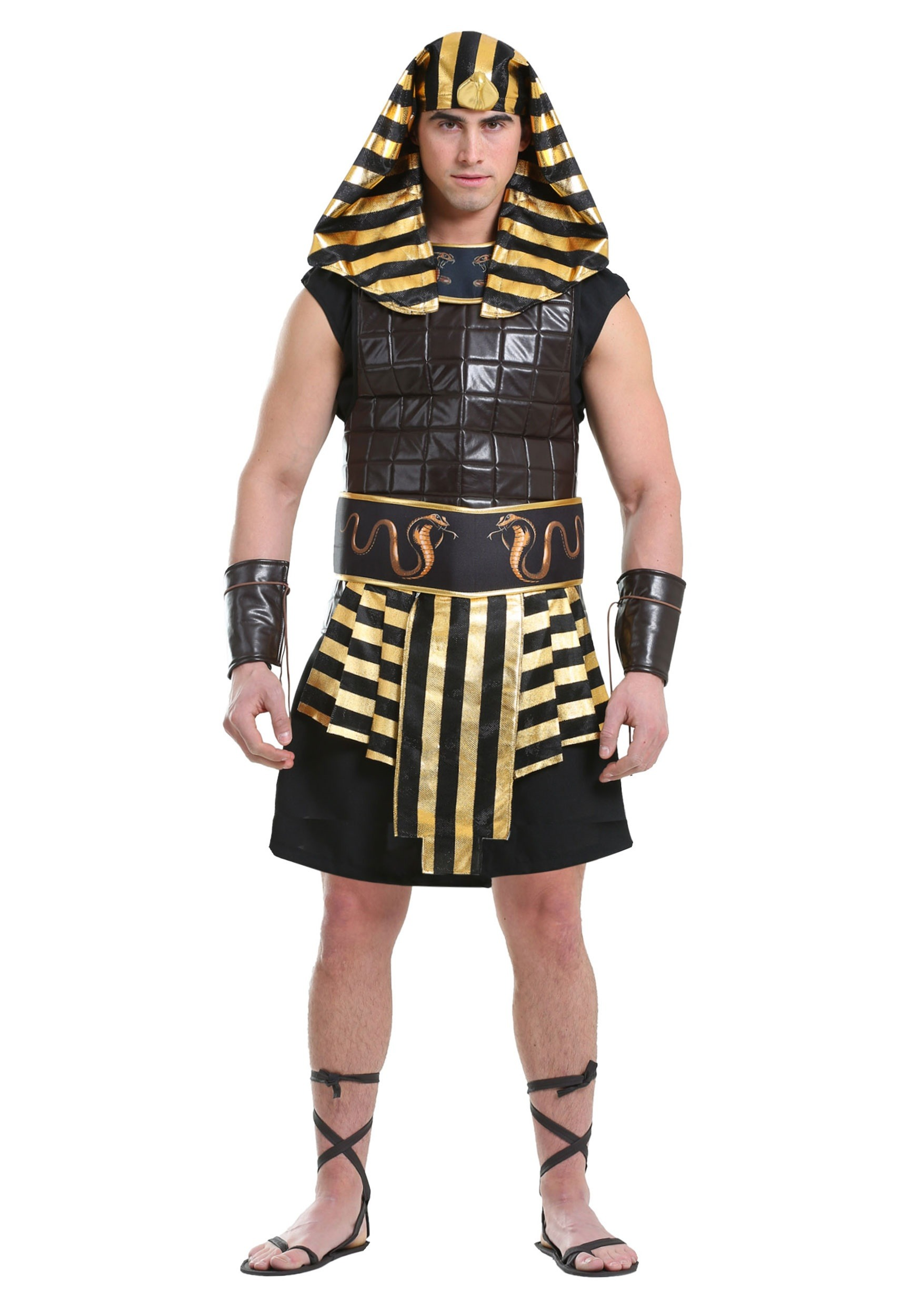 Adult Men's Ancient Pharaoh Costume