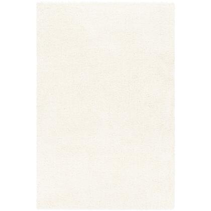 Deluxe Shag DXS-2300 9 x 12 Rectangle Modern Rug in