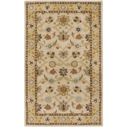 Caesar CAE-1010 6 x 9 Rectangle Traditional Rug in