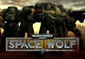 Warhammer 40,000: Space Wolf + Exceptional Card Pack DLC Steam CD Key