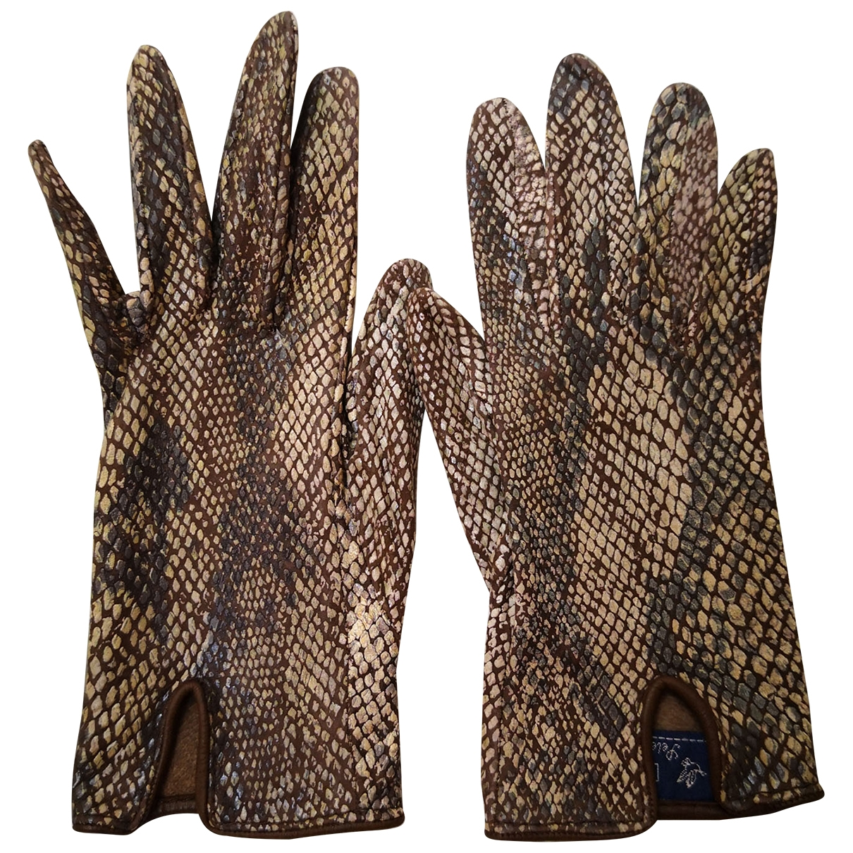 Non Signé / Unsigned \N Multicolour Leather Gloves for Women 7 Inches