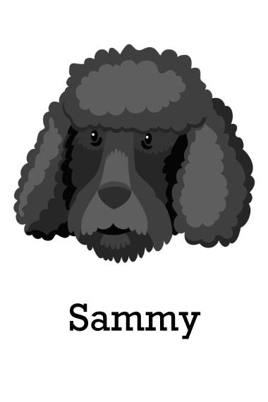 Pet 24x36 Poster , Home Décor -Poodle 1
