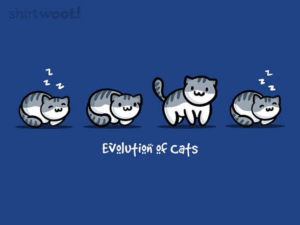 Evolution Of Cats T Shirt