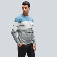 Pullover mit Cut und Sew Einsatz und Streifen