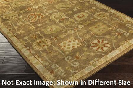 Ainsley AIN1016-913 9' x 13' Rectangular 100% Wool Hand Knotted Rug with Antique Wash  Minimal Shedding  Lustrous Sheen  and Made in India in Beige