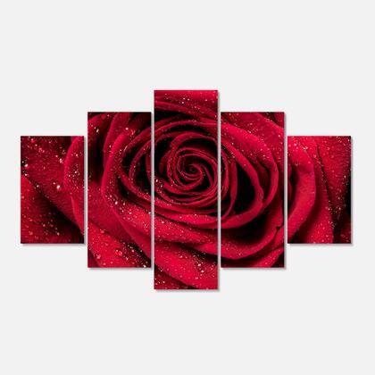 PT10000-373 Red Rose Petals With Rain Droplets - Floral Art Canvas Print - 60X32 - 5