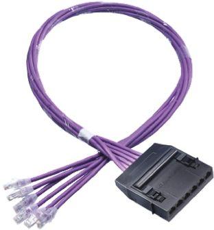 HellermannTyton Cat6 RJ45 6 Port Cassette to Plug Cable Assembly, UTP Shielding