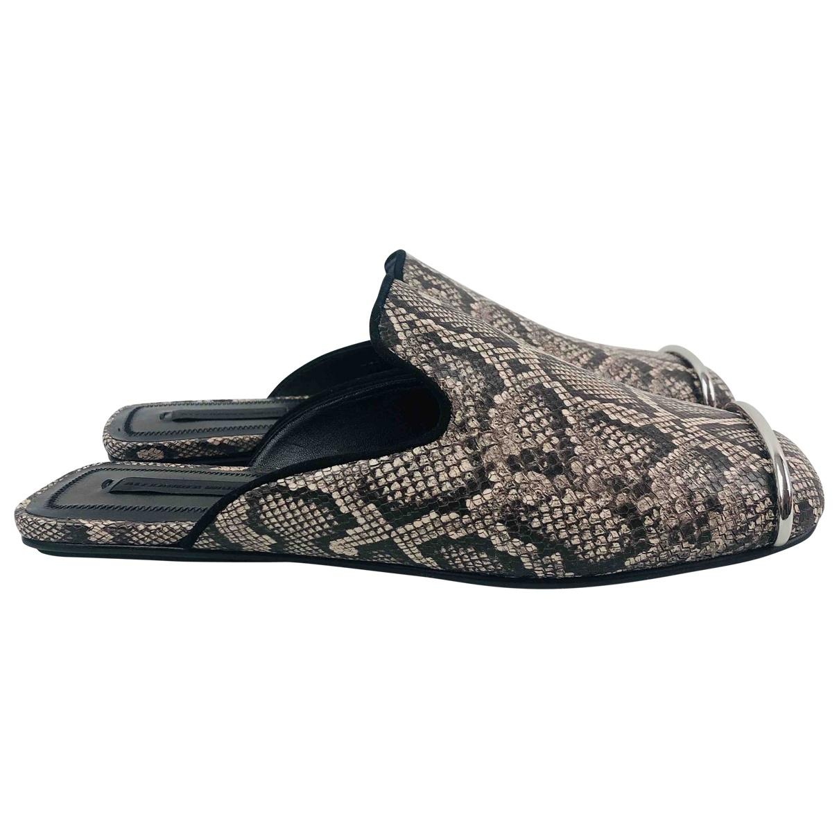 Alexander Wang \N Brown Leather Sandals for Women 36 EU