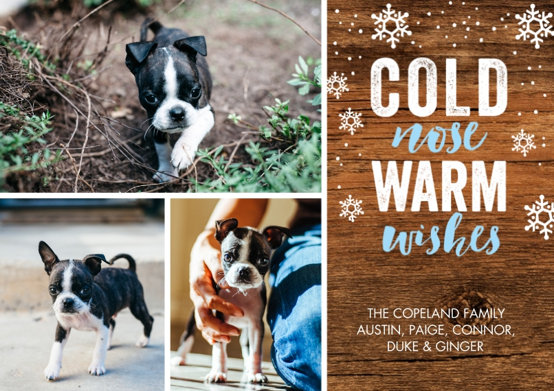 Christmas Photo Cards 5x7 Cards, Standard Cardstock 85lb, Card & Stationery -Holiday Pet Warm Wishes by Tumbalina