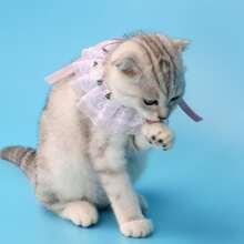Lace Cat Collar