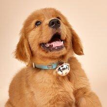 Bone Decor Dog Collar