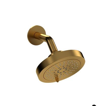 366BG-WS 2-Jet Showerhead with Arm  in Brushed