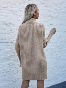 High Neck Raglan Sleeve Knit Dress Without Belt