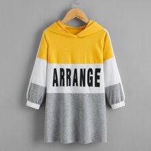 Toddler Girls Color-block Letter Graphic Sweatshirt Dress