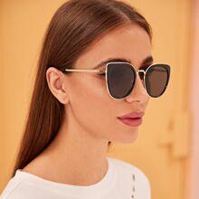 Plain Frame Flat Lens Sunglasses With Case