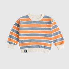 Toddler Boys Cartoon & Stripe Print Sweatshirt