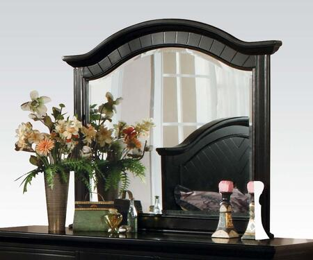 04744 Newville Mirror with Arched Frame in Ebony