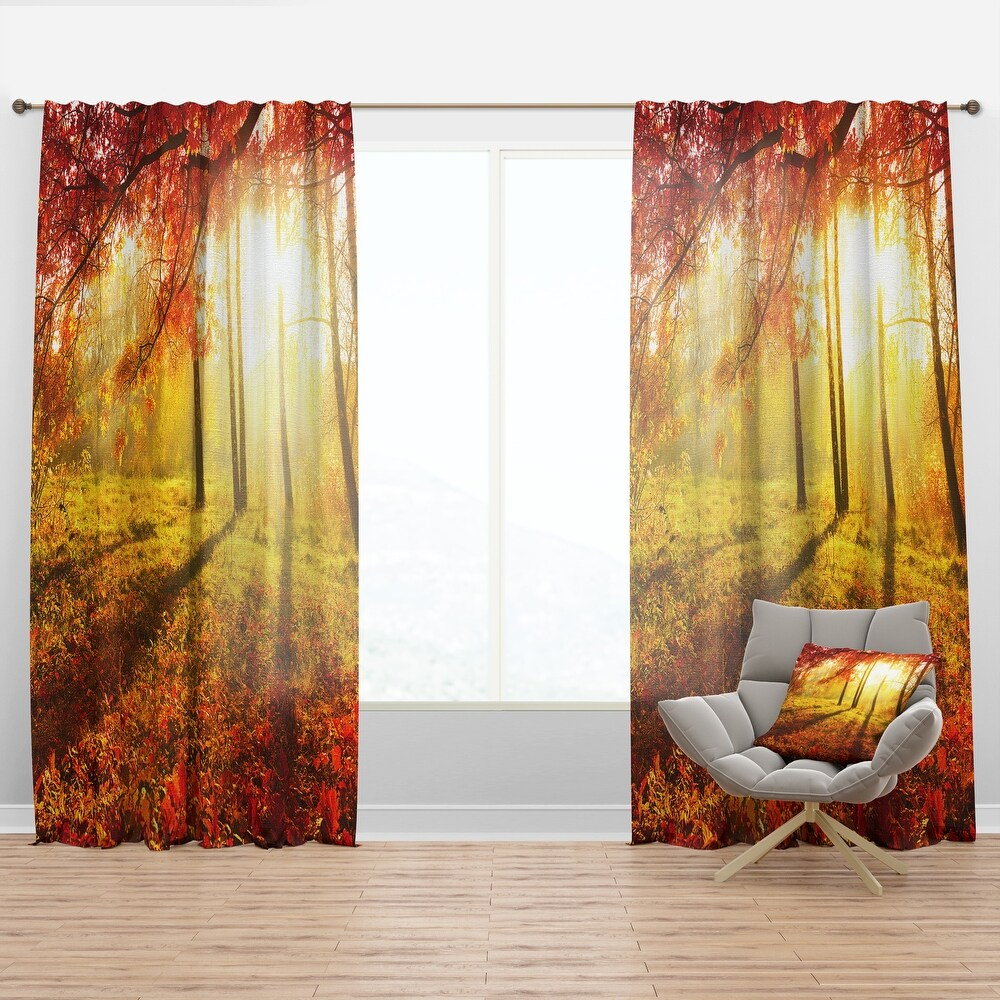 Designart 'Yellow Red Fall Trees and Leaves' Landscape Curtain Panel (50 in. wide x 95 in. high - 1 Panel)