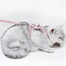 1 Stueck Katzen Haarreiniger