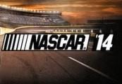 NASCAR 14 EU Steam CD Key