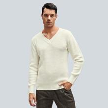 Men V-neck Solid Sweater