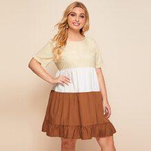 Plus Colorblock Ruffle Hem Dress