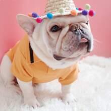 1 Stueck Hund Hut