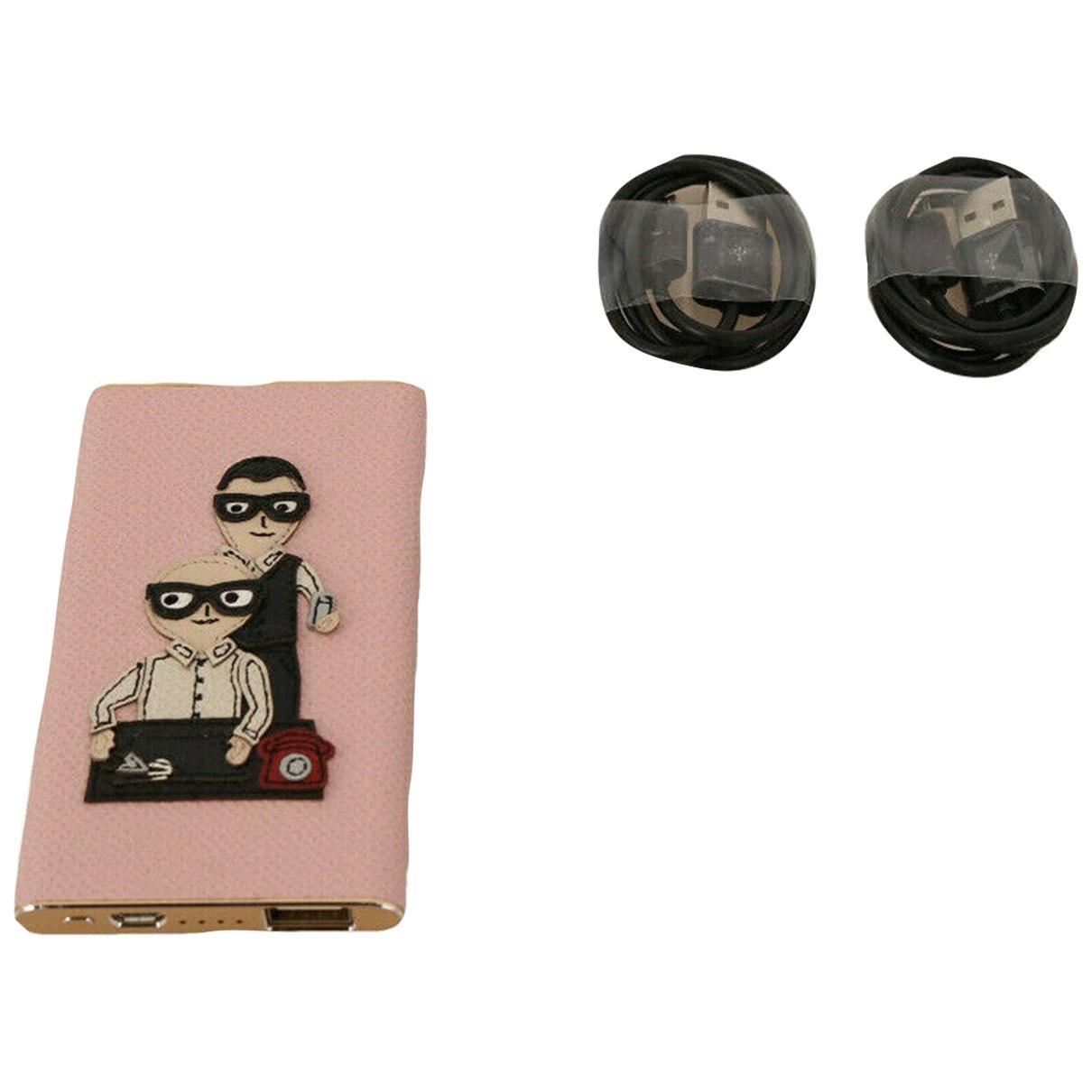 Dolce & Gabbana \N Accessoires in  Rosa Leder