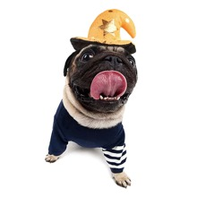 Halloween Hat Decor Dog Hair Hoop