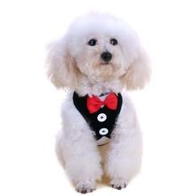 1 pieza harness para perro con 1 pieza correa para perro