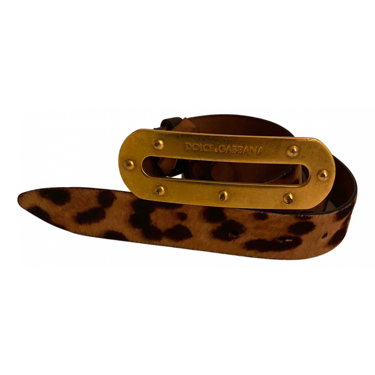 Dolce & Gabbana N Camel Exotic leathers belt for Women L International
