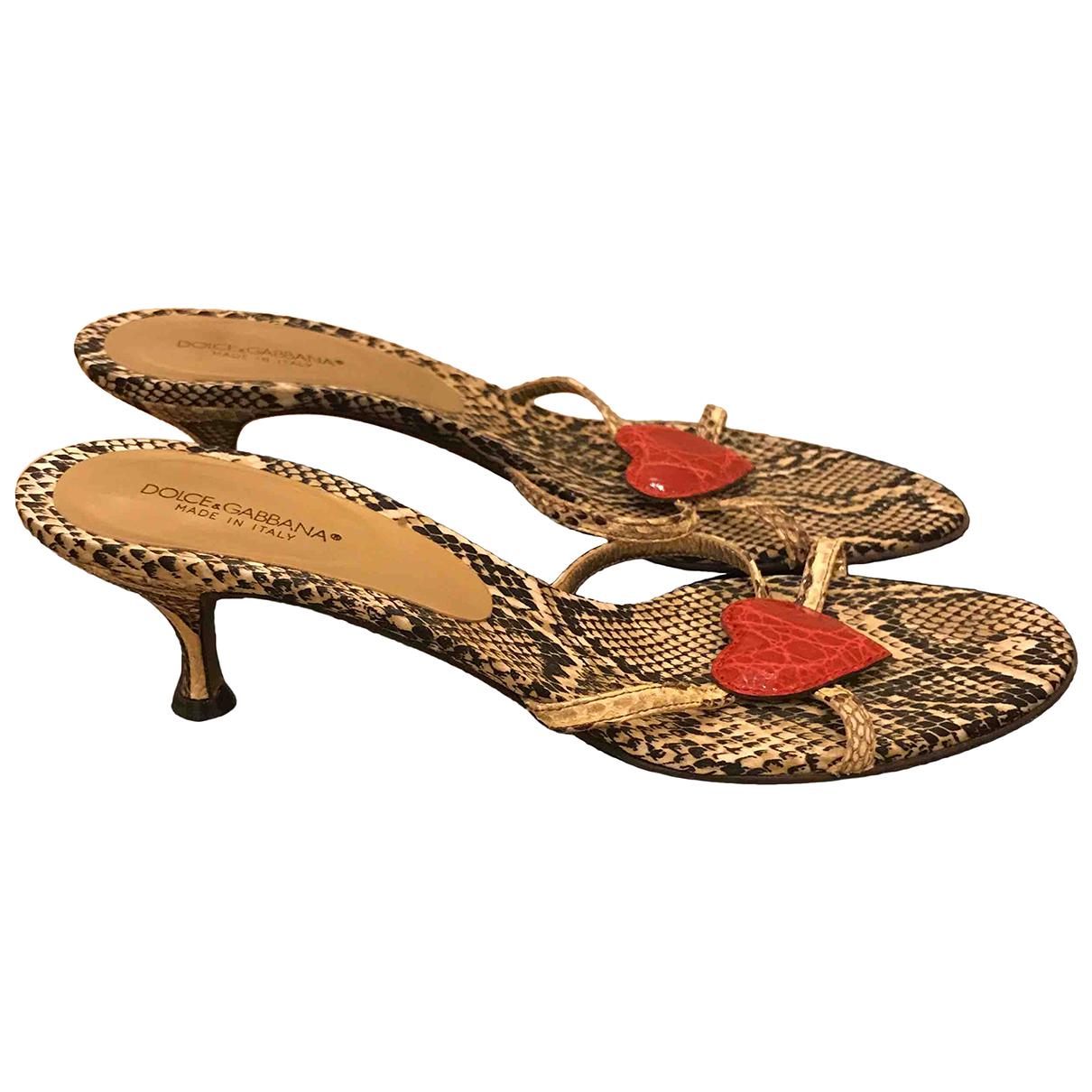 Dolce & Gabbana \N Sandalen in  Beige Exotenleder