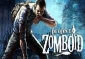 Project Zomboid Steam CD Key