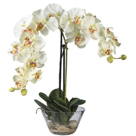 Nearly Natural Phalaenopsis With Glass Vase Silk Flower Arrangement, One Size , White