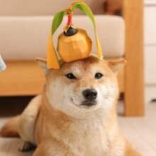 1 Stueck Obst formiges Spielezug fuer Hunde