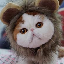 1pc Cosplay Lion Velcro Cat Hat