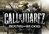 Call of Juarez: Bound in Blood Steam CD Key