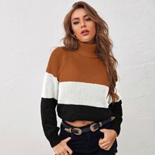 Colorblock Turtleneck Ribbed Sweater