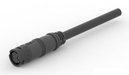 TE Connectivity , 9-283400 Series, Straight SlimSeal to Unterminated Cable assembly, 2 Core 150mm Cable