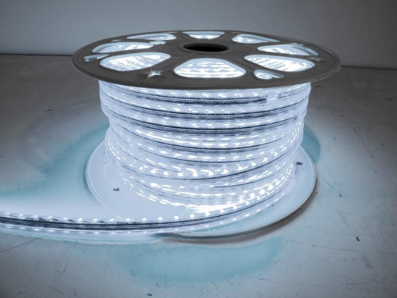 Race Sport Lighting RS-3528-164FT-CW Cool White 110V Atmosphere Series Waterproof 3528 LED Strip Lighting