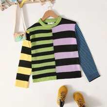 Pullover mit Farbblock und Streifen