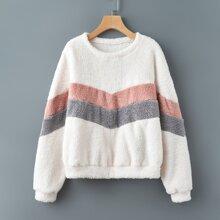 Colorblock Teddy Sweatshirt