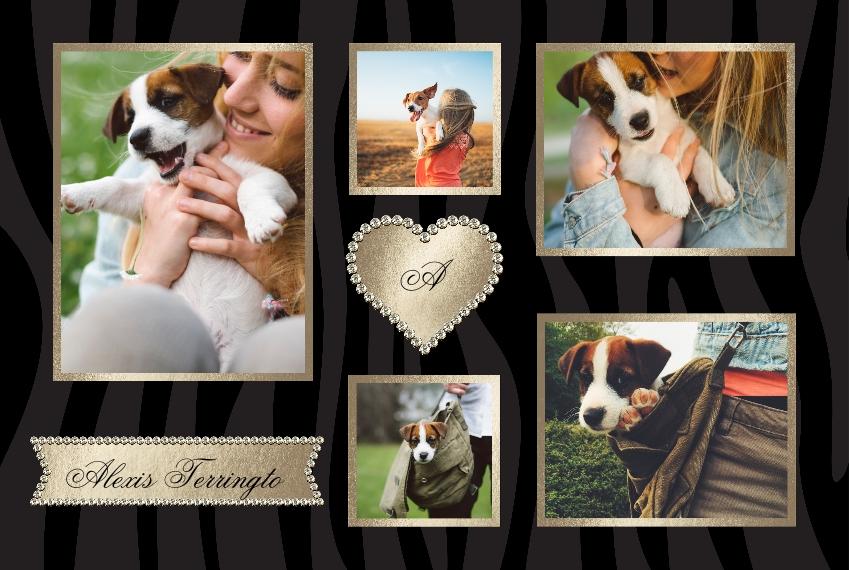 Pets Placemat, Gift -Prosperous Pet