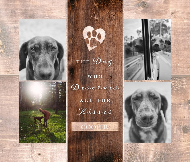 Pet Framed Canvas Print, Oak, 20x24, Home Décor -The Good Dog