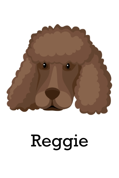 Pet 24x36 Adhesive Poster, Home Décor -Poodle Shaved 2