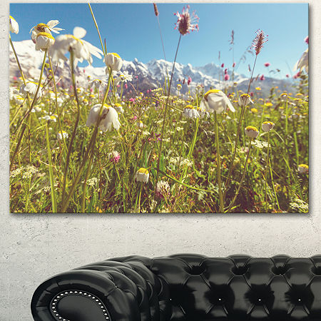 Designart Blooming Mountain Meadow Flowers Large Flower Canvas Art Print, One Size , Green