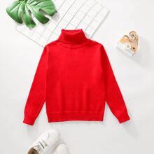 Toddler Boys Solid Turtleneck Sweater