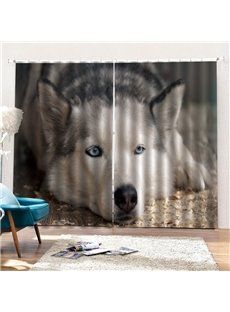 3D Animal Print Blackout and Dust-proof Decorative Curtains with Cute Huskie Pattern 200g/m² Shading Polyester No Pilling No Fading No off-lining