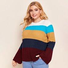 Plus Colorblock Sweater