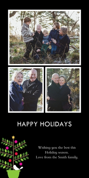 Holiday Photo Cards 4x8 Flat Card Set, 85lb, Card & Stationery -Partridge in a Pear Tree